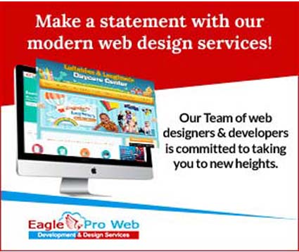Eagle Pro Web Design Services